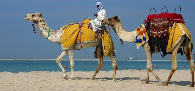 Культура в ОАЕ