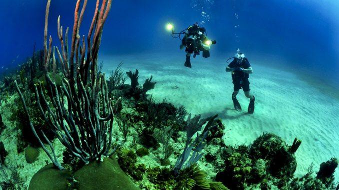 Дайвинг на Бали