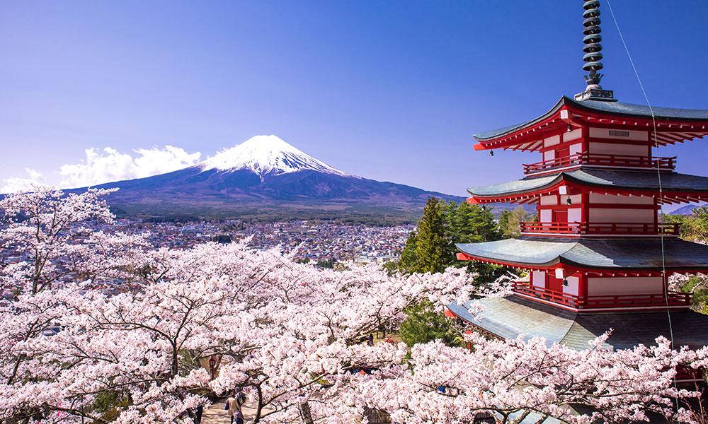 Климать в Японии